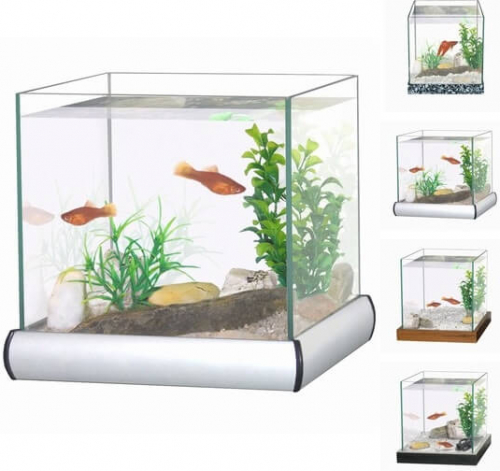 Aquarium kit with gravel and plants