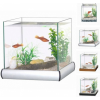 Aquarium kit with gravel and plants