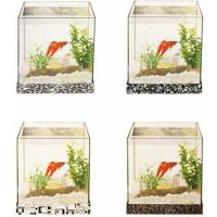 Kit aquarium avec gravier et plante  (4)