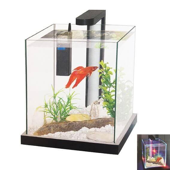 Aquarium filtr avec clairage led visible dans le noir aquarium et meuble - Eclairage led aquarium ...