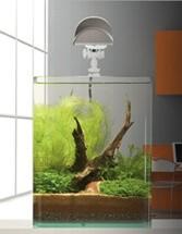 Aquarium NanoCube Complete PLUS 30 L_1