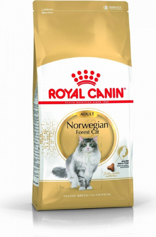 Royal Canin Breed Norwegian pour Chat Adulte