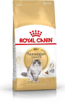 Royal Canin Breed Norvegian pour Chat Adulte
