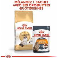 Royal Canin Breed Ragdoll