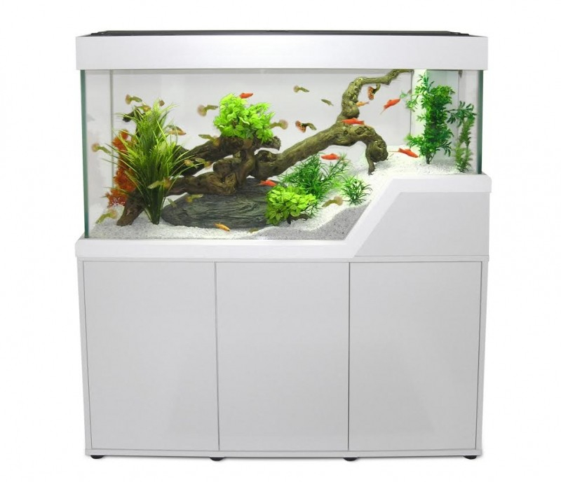 aquarium cara bes 120 blanc avec meuble aquarium et meuble. Black Bedroom Furniture Sets. Home Design Ideas