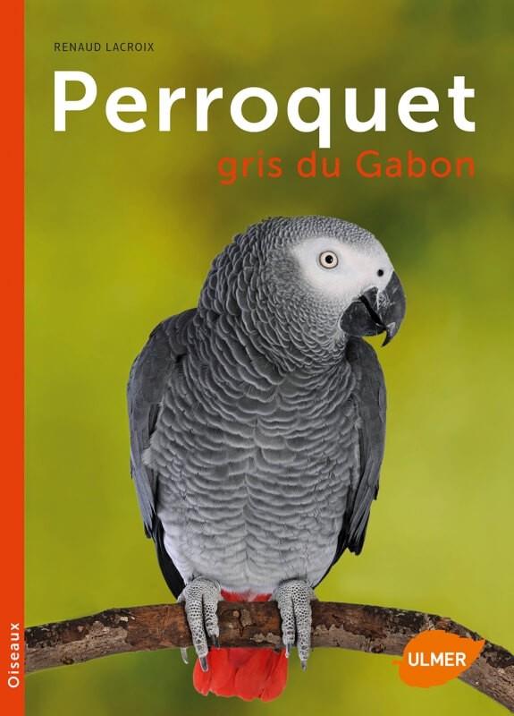 Gabonese Grijze papegaai, nieuwe editie