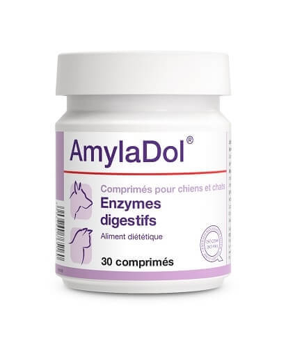 how to give dog enzymes