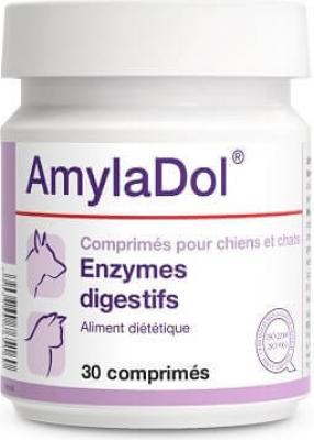 AMYLADOL Enzymes digestives