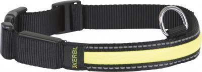 Collier Lumineux Light & Reflex
