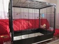 27926_Cage-Primo-60-Knock-Down-noire_de_annick_58957134556f53490507ed2.77309002