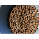 28111_Brit-Care-Cat-Lilly-I've-Sensitive-Digestion-Senza-Cereali-Agnello-&-Salmone-per-Gatti-Sensibili_de_Sergio_272805004600d2f3e3f82c1.87883225