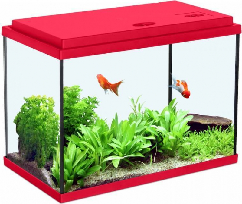 Aquarium NanoLife KIDZ rouge