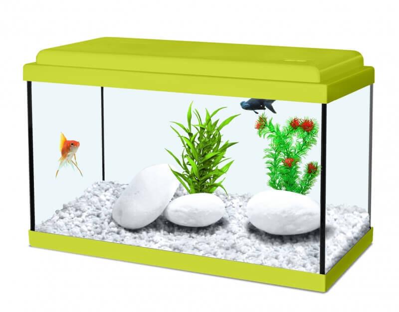 Aquarium NanoLife KIDZ vert_1