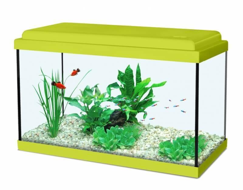 Aquarium NanoLife KIDZ vert_0