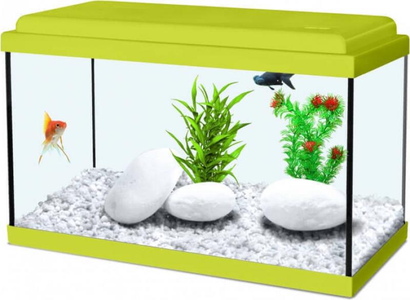 Aquarium NanoLife KIDZ vert