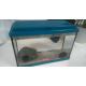 Aquarium-NanoLife-KIDZ-bleu_de_Marielle _10210251515c3de852d4a319.40665613