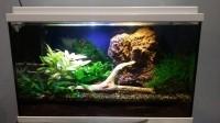 Aquarium-NanoLife-KIDZ-blanc_de_Maxime_2069096858346767e2f661.41515882