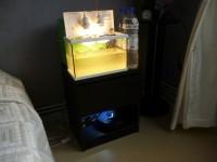 Aquarium-NanoLife-KIDZ-blanc_de_brigitte_11855432495821a501728a80.40545224