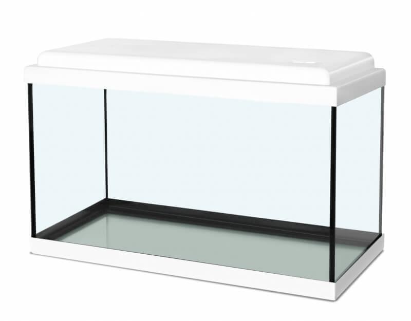 Aquarium NanoLife KIDZ blanc_1
