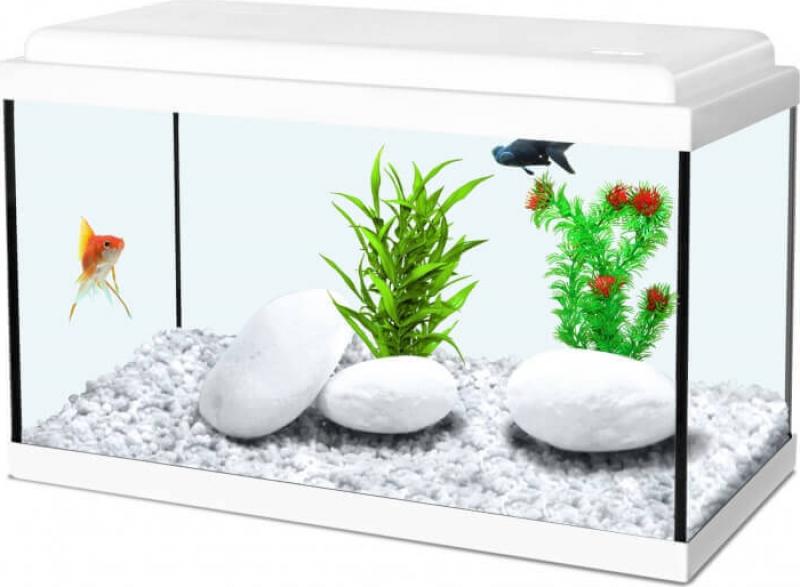 Aquarium NanoLife KIDZ blanc
