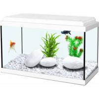 Aquarien & Möbel