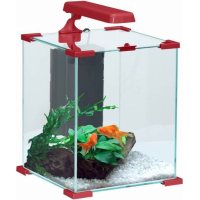 Aquarium Nanolife CUBE rouge