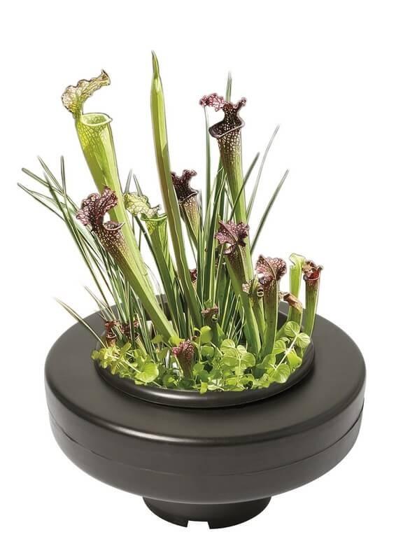 Panier flottant pour bassin accessoires pour plantes for Achat plante bassin