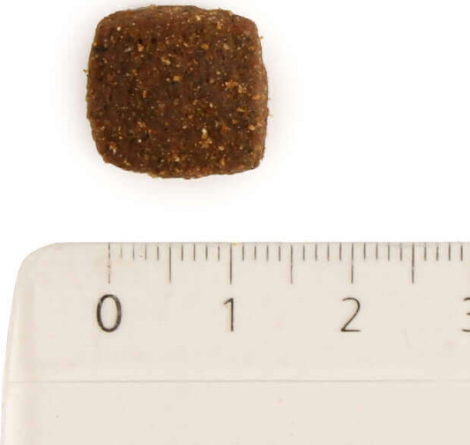 QUALITY SENS Mini Adult Sans Céréales pour Chien de petite taille
