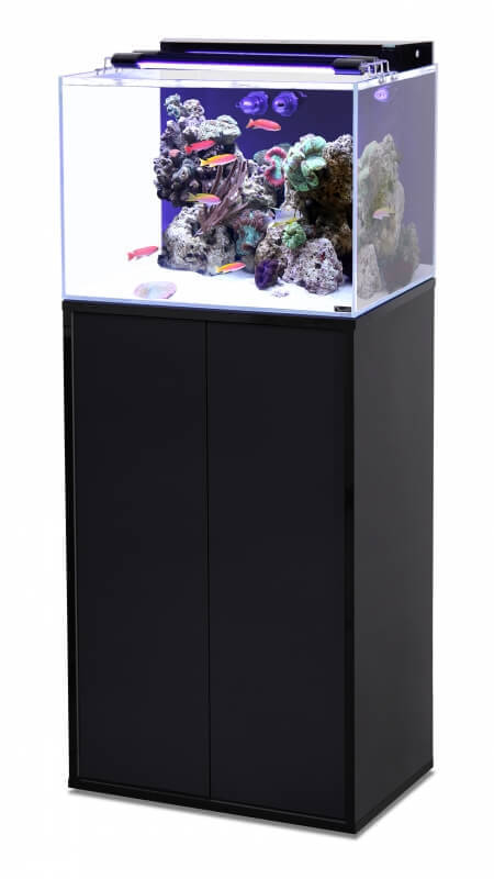 ensemble aquarium marin meuble tout quip noir laqu aquarium et meuble. Black Bedroom Furniture Sets. Home Design Ideas