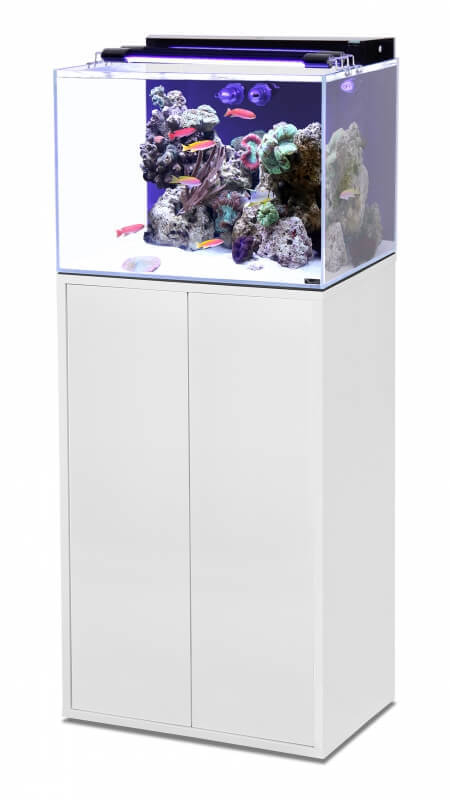 ensemble aquarium marin meuble tout quip blanc laqu aquarium et meuble. Black Bedroom Furniture Sets. Home Design Ideas