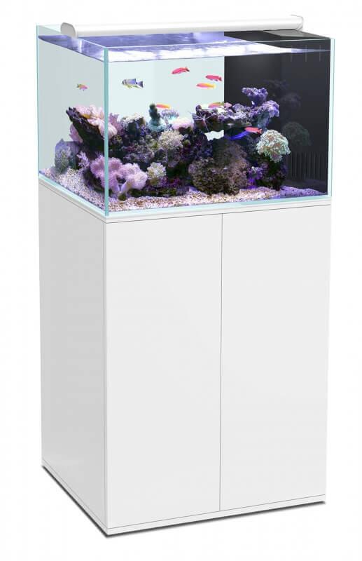 ensemble aquarium eau de mer meuble ultra clear tout 233 quip 233 blanc laqu 233 aquarium et meuble
