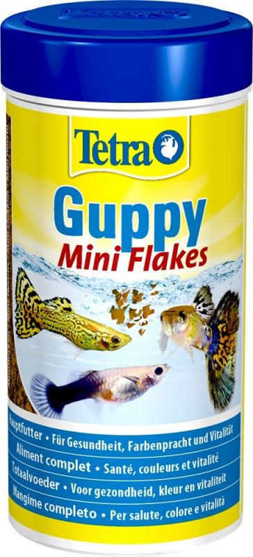 Tetra Guppy et Guppy Colour