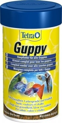 Tetra Guppy et Guppy Colour
