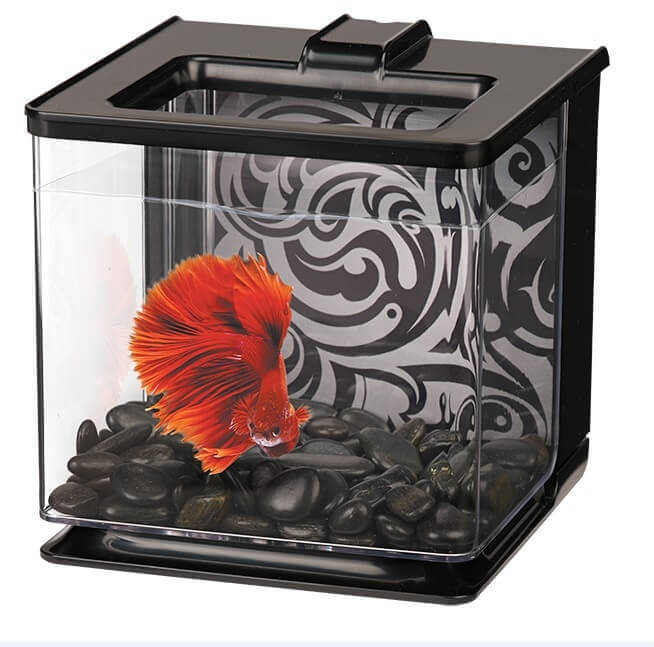 Aquarium Betta EZ Care 2.5L_1