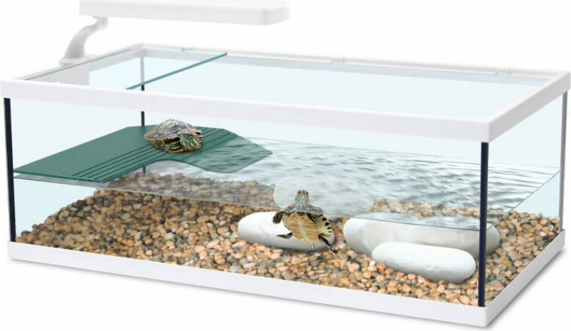 aquarium tortum ohne wei en filter. Black Bedroom Furniture Sets. Home Design Ideas