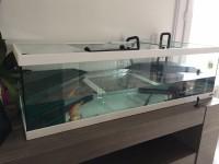 28739_Aquarium-Tortum-avec-filtre-blanc_de_Emeline_13451259895aaae5d1e18283.40199352