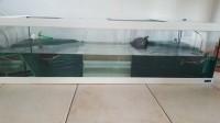 28739_Aquarium-Tortum-avec-filtre-blanc_de_Priscilla_1095087306597af1639f7cd2.96813933