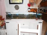 28739_Aquarium-Tortum-avec-filtre-blanc_de_Urabain_1647308358573bfe9189fb34.89485226
