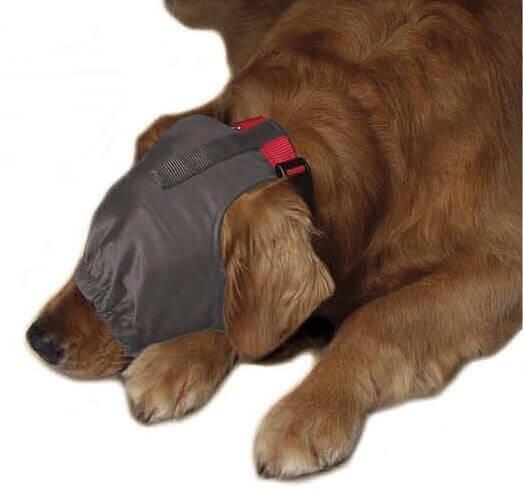 bandeau calmant anti stress pour chien anti stress pour chien. Black Bedroom Furniture Sets. Home Design Ideas