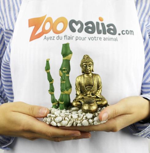 Dekoration Und Sauerstoffspender Budda Mit Bambus Sauerstoffspender