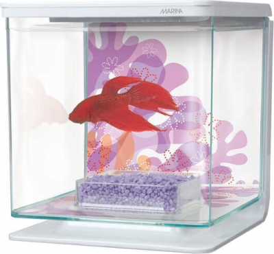 Betta kit Flower 2L