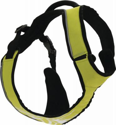 Harnais de randonnée/jogging Canisport vert