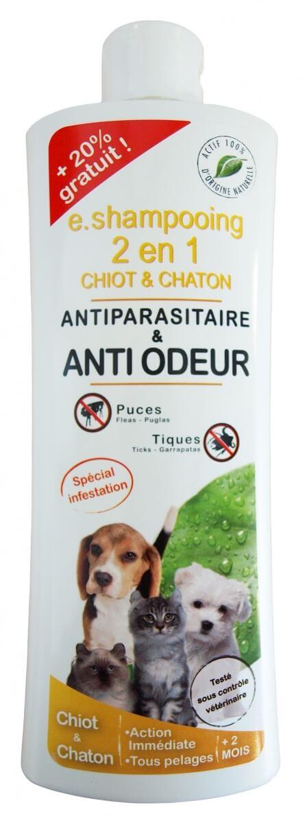 Anti puces chiot - Traitement anti puce chaton ...