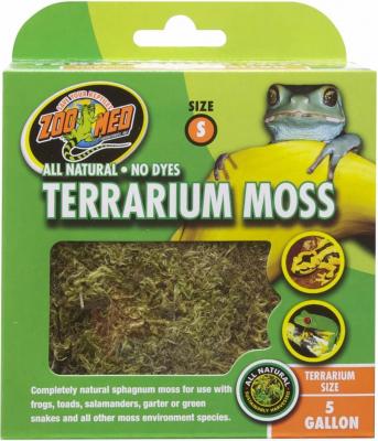 Terrarium Moos S und M