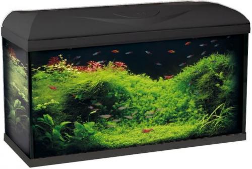 aquarium riviera 60 ou 80 led aquarium et meuble. Black Bedroom Furniture Sets. Home Design Ideas