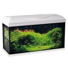 aquarium riviera 60 led aquarium et meuble. Black Bedroom Furniture Sets. Home Design Ideas