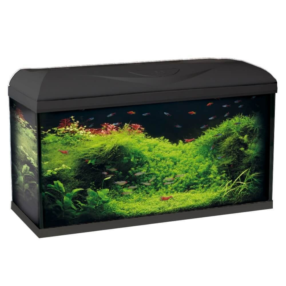 aquarium riviera 60 led aquarium et meuble. Black Bedroom Furniture Sets. Home Design Ideas