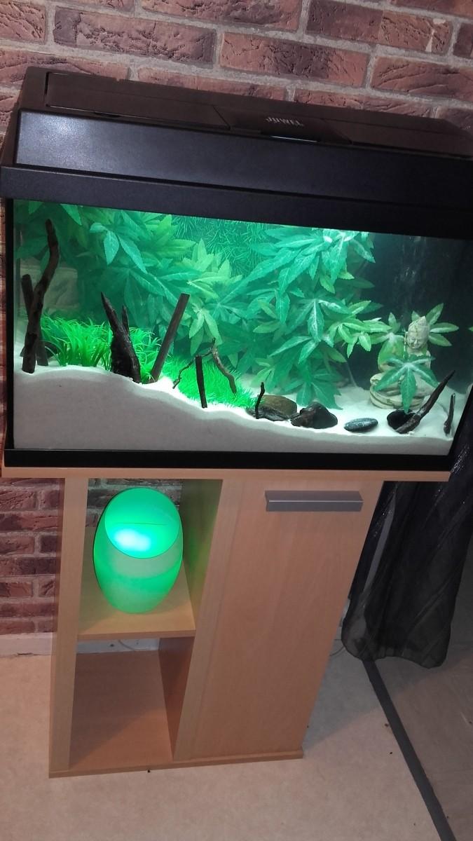 sable naturel blanc fin sable et gravier aquarium. Black Bedroom Furniture Sets. Home Design Ideas