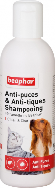 Shampooing antiparasitaire à la Tétraméthrine