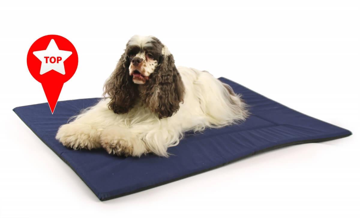 tapis mousse bleu grandes tailles coussin et tapis. Black Bedroom Furniture Sets. Home Design Ideas